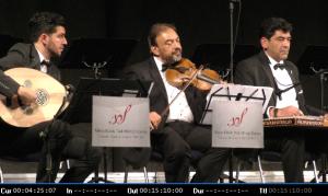 Musiker beim Konzert