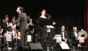 Sängerin im Konzert